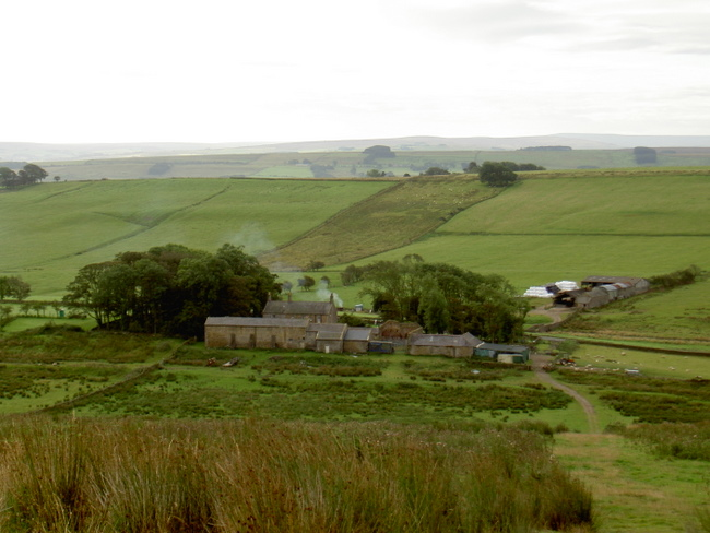 Winshields Farm (campsite is on the other side next to the road)
